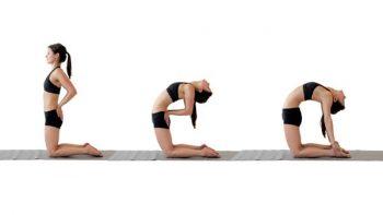 Tư thế Yoga Camel Pose giúp giảm mỡ bụng hiệu quả